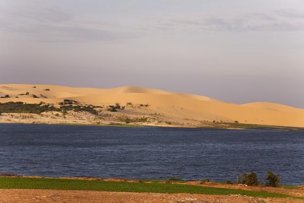 Dune di sabbia bianca all'alba, Foto Premium