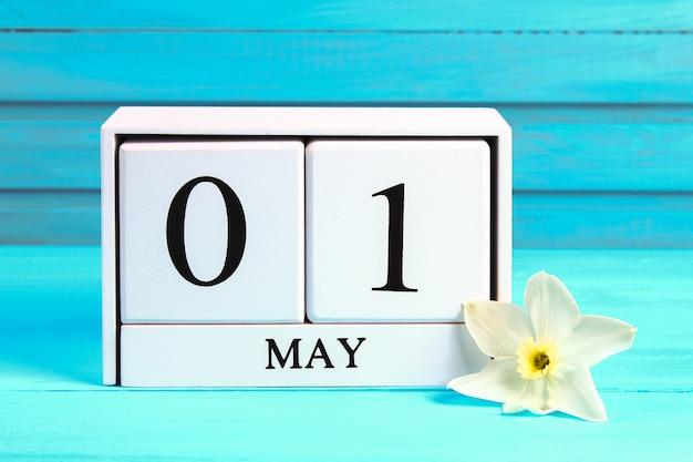 Calendario in legno bianco con testo: 1 maggio. fiori bianchi di narcisi su un tavolo di legno blu. festa dei lavoratori Foto Premium