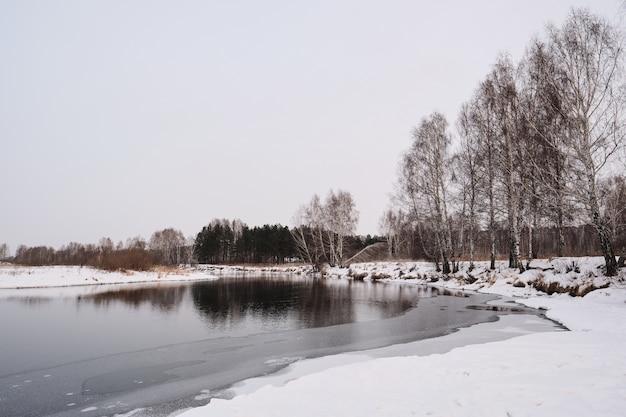 Paesaggio invernale della riva del fiume con alberi nudi e neve pulita, concetto di natura Foto Premium