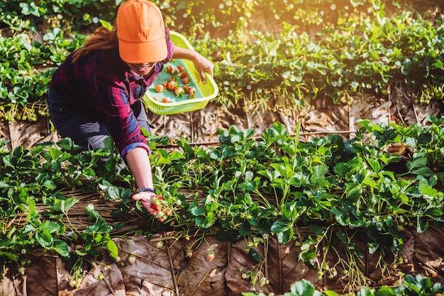 Donna asiatica viaggio natura Foto Premium