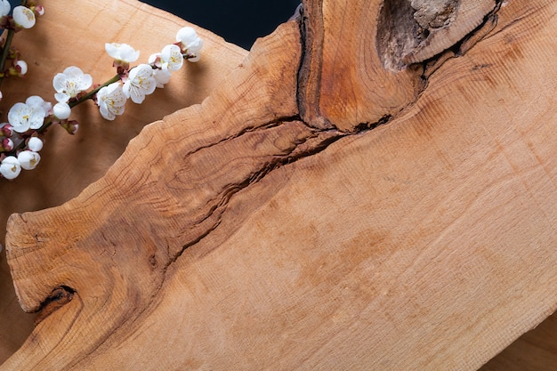Il fondo di legno decora dal fiore del germoglio della prugna Foto Premium