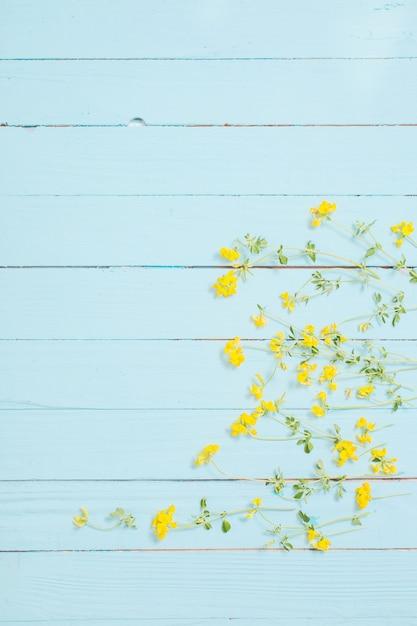 Fiori selvaggi gialli su fondo di legno blu Foto Premium