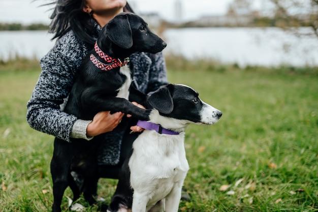 Giovane bella ragazza che cammina il cane. femmina sveglia che gioca con i cuccioli all'aperto alla natura. proprietario con deliziosi piccoli canini con gli occhi di pietà. Foto Premium