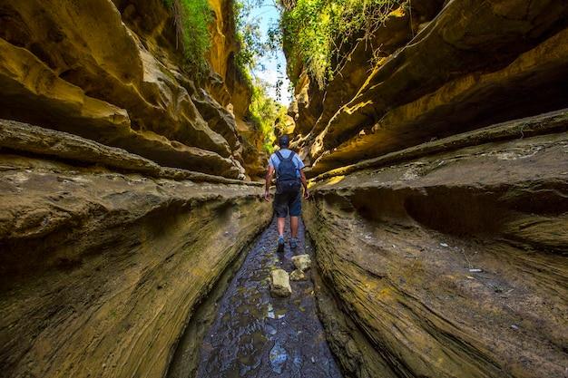 Un giovane che cammina attraverso il canyon del parco nazionale di naivasha hell's gate pieno di animali. kenya walking o bike safari Foto Premium