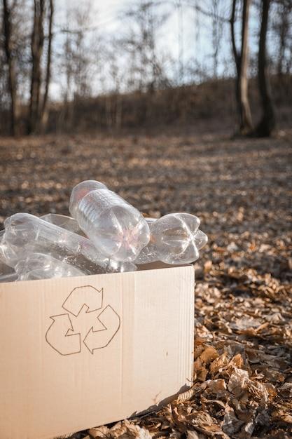 I giovani volontari puliscono l'area in legno, con la bottiglia di plastica nel parco pubblico Foto Premium