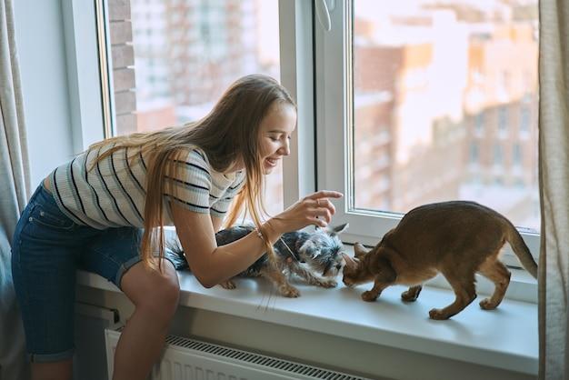 Giovane donna che gioca con un cane e un gatto in un giorno libero a casa. la gioia di avere animali domestici. Foto Premium