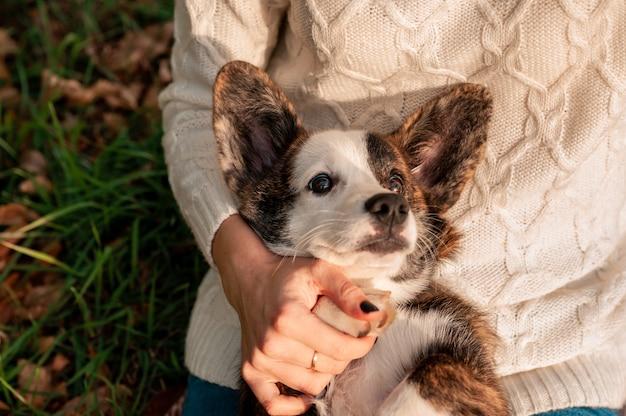 Giovane donna con il suo cane in autunno colore Foto Premium