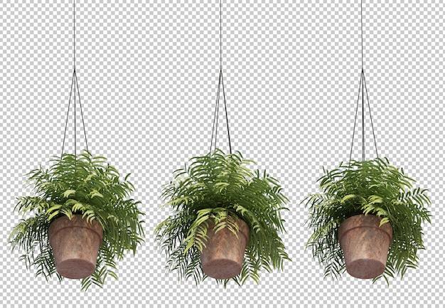 Rappresentazione 3d della felce in piante da vaso d'attaccatura Psd Premium