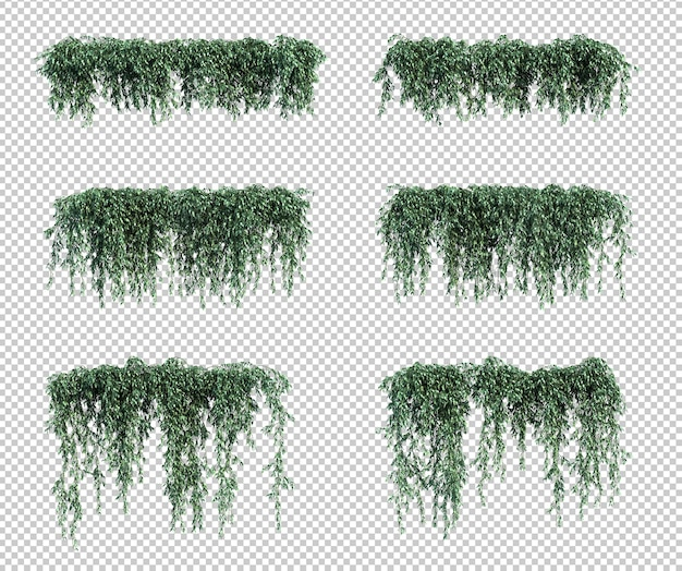 Rendering 3d di piante pensili in rendering 3d Psd Premium