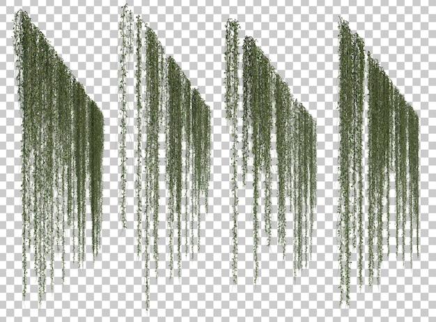 Rappresentazione 3d delle piante d'attaccatura Psd Premium