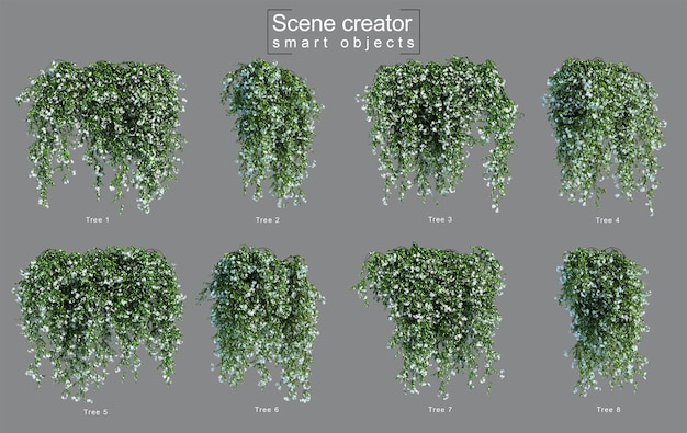 3d rendering di appendere star jasmine creatore di scene Psd Premium
