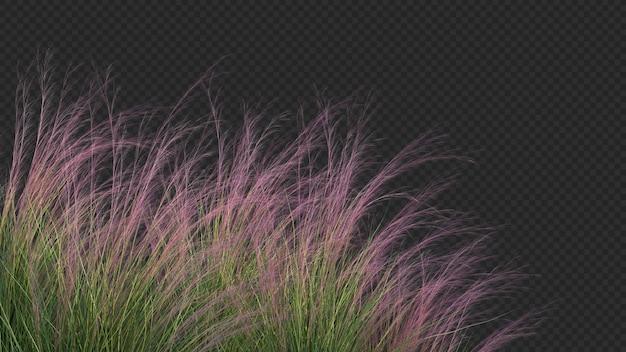 Rendering 3d di primo piano viola tre erba verde Psd Premium