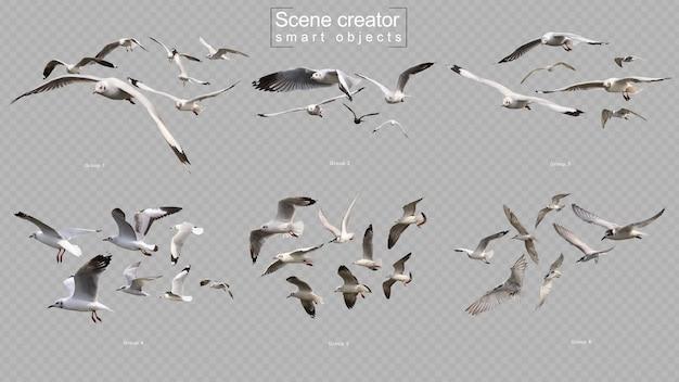 Gli uccelli volanti hanno impostato il creatore di scena isolato Psd Premium