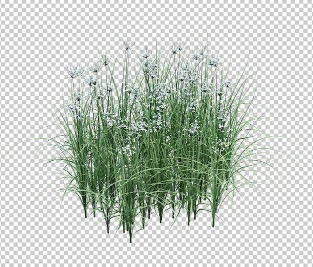 Erba e fiori Psd Premium