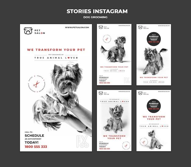 Raccolta di storie instagram per azienda di toelettatura di animali domestici Psd Premium