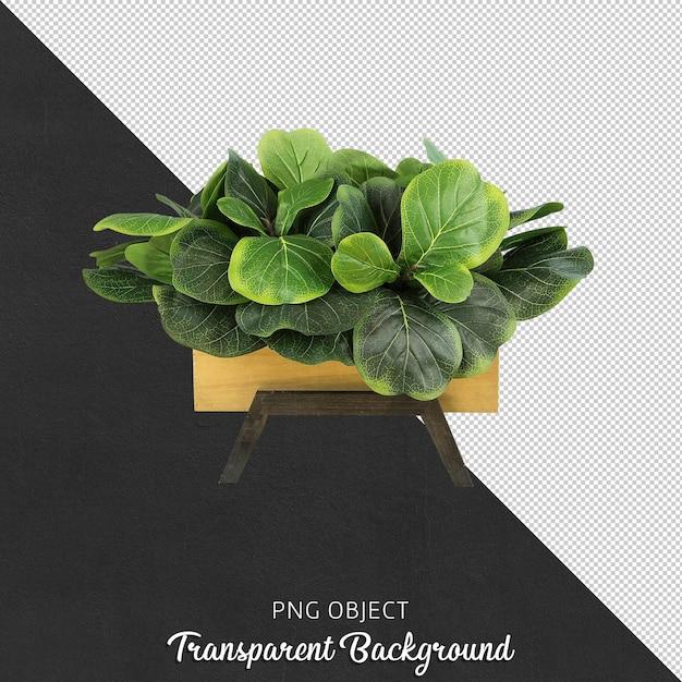 Fiore decorativo isolato isolato Psd Premium