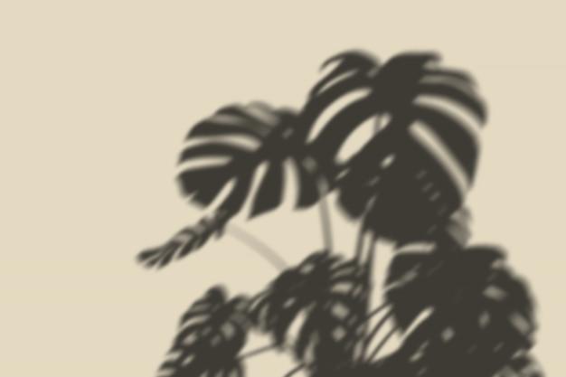 Overlay shadow botanical Psd Premium