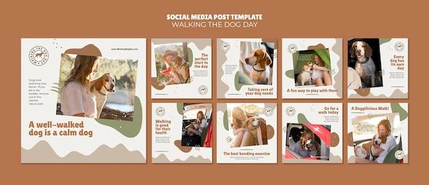 Walking the dog day modello di post sui social media Psd Premium