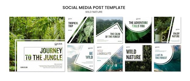 Modello di post di social media natura selvaggia Psd Premium
