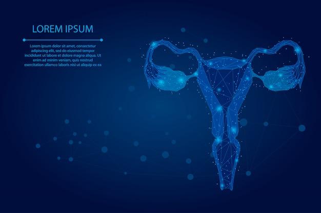 Linea e punto astratti della maglia ovaie. sanità degli organi riproduttivi femminili di poli basso utero e ovaie. Vettore Premium