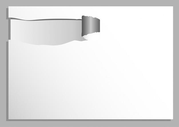 Priorità bassa di vettore di tono bianco e grigio astratto carta strappata Vettore Premium