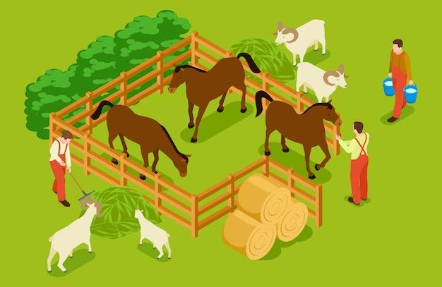 Fattoria degli animali, bestiame con cavalli, capre, pecore e illustrazione isometrica dei lavoratori Vettore Premium