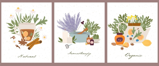 Set di poster di farmacista di benessere naturale, organico, aromaterapia, oli essenziali, incenso, tisane, candele, fiori di campo ed erbe aromatiche Vettore Premium