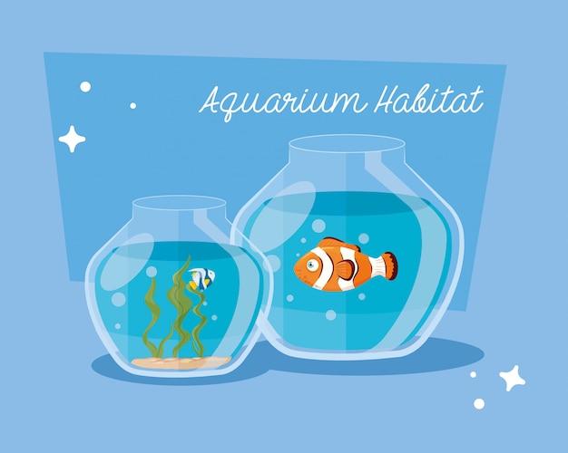 Acquari pesci con acqua, acquari animali domestici marini Vettore Premium