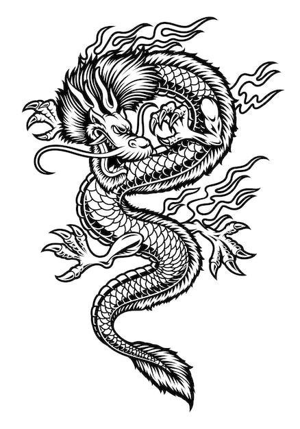 Un'illustrazione del drago asiatico isolata su priorità bassa bianca. Vettore Premium