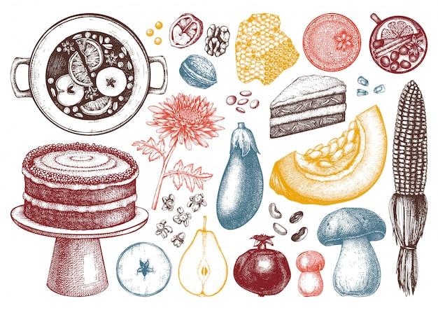 Collezione di elementi del festival del raccolto autunnale. illustrazioni tradizionali del giorno del ringraziamento. schizzi di cibi e bevande fatti in casa. verdure, frutta, fiori disegnati a mano. Vettore Premium
