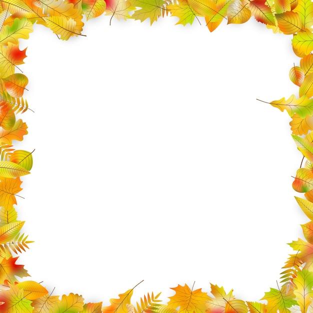 Blocco per grafici dei fogli di autunno isolato su bianco. Vettore Premium