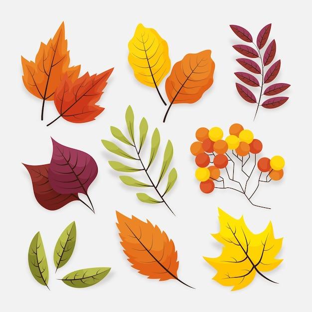 Set di foglie d'autunno Vettore Premium