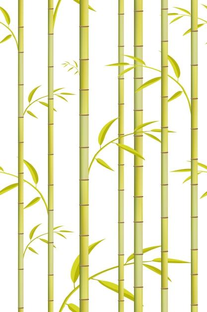 Modello di bambù. sfondo albero verde. Vettore Premium