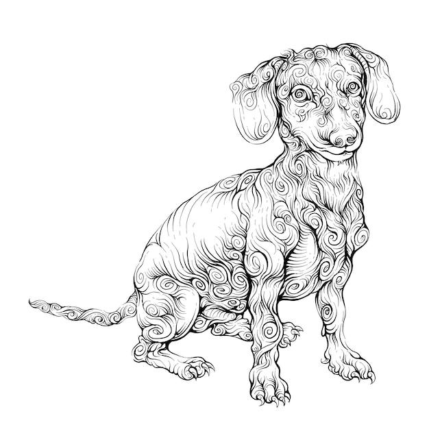 Disegno a mano cane beagle Vettore Premium