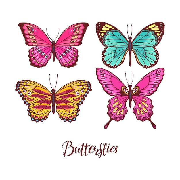 Bellissimo set di farfalle colorate. illustrazione disegnata a mano Vettore Premium