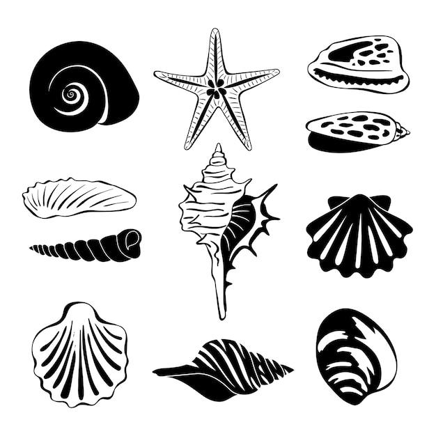 Illustrazione monocromatica nera di conchiglie marine. silhouette isolare. souvenir esotici di conchiglie, conchiglie marittime a spirale Vettore Premium