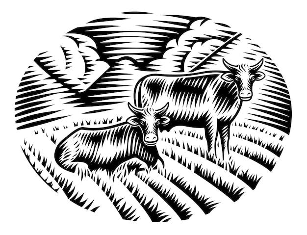 Un'illustrazione in bianco e nero delle mucche sull'erba nello stile dell'incisione Vettore Premium