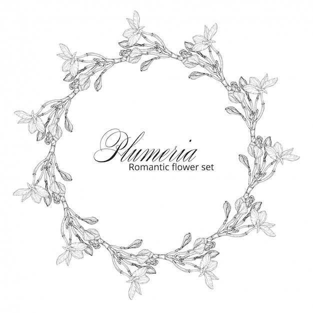 Fiori di plumeria in bianco e nero. ghirlanda di fiori. Vettore Premium