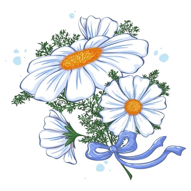 Bouquet di margherite bianche legate con fiocco azzurro Vettore Premium