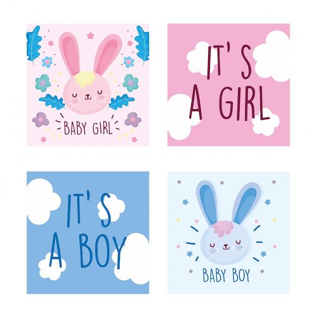 Ragazzo o ragazza, genere rivelare set di carte decorazione conigli fiori carino Vettore Premium