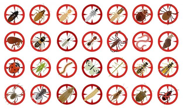 Insetto dell'icona stabilita del fumetto di vettore dell'insetto. scarabeo di insetto dell'illustrazione di vettore. insetto dell'icona del fumetto e scarabeo di mosca isolati. Vettore Premium