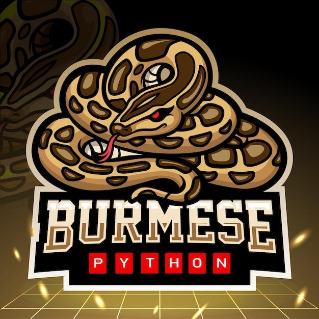 Mascotte serpente pitone birmano. design del logo esport Vettore Premium