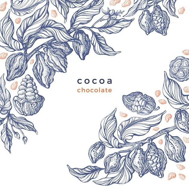 Ramo grafico di trama di cacao illustrazione botanica disegnata a mano di arte Vettore Premium