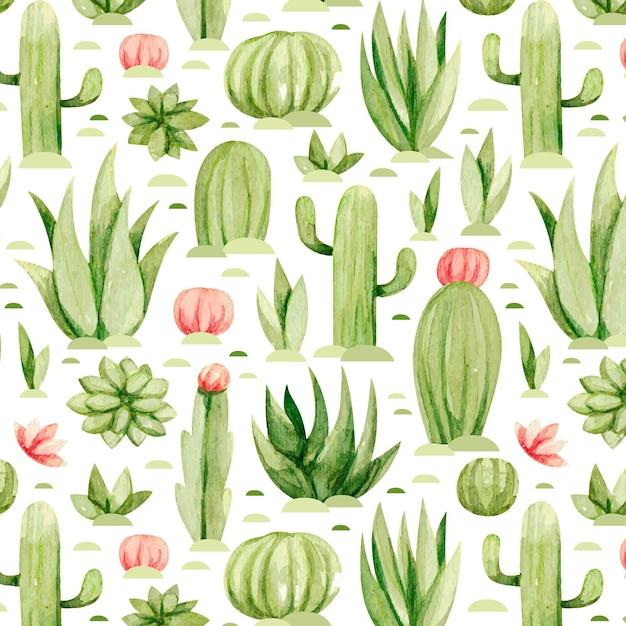 Set di modelli di cactus Vettore Premium