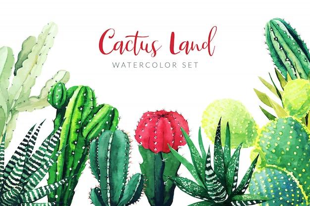 Cactus e piante grasse, fondo orizzontale Vettore Premium
