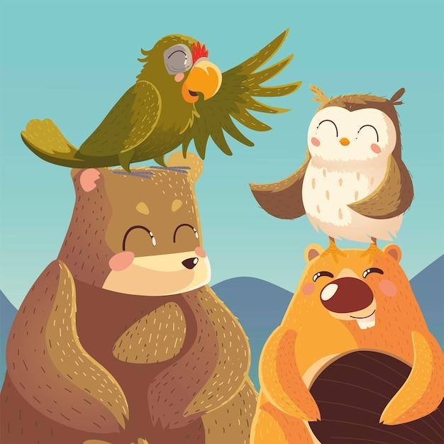 Cartoon animali orso pappagallo castoro e gufo illustrazione della fauna selvatica Vettore Premium