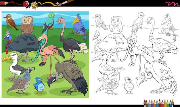 Cartone animato uccelli gruppo animale da colorare pagina del libro Vettore Premium