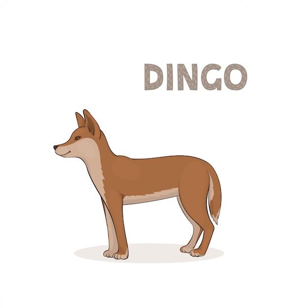 Dingo di cartone animato isolato su uno sfondo bianco Vettore Premium