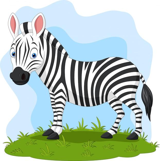 Zebra felice del fumetto nell'erba Vettore Premium