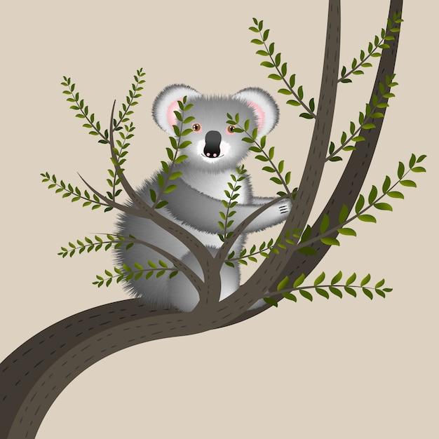 Illustrazione del fumetto con il koala sveglio sull'albero. simpatico personaggio dei cartoni animati divertenti. animale australiano. Vettore Premium